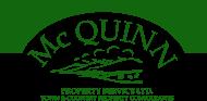 Mc Quinn Consulting